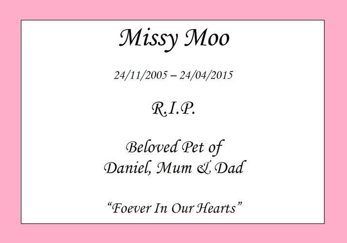 missy moo