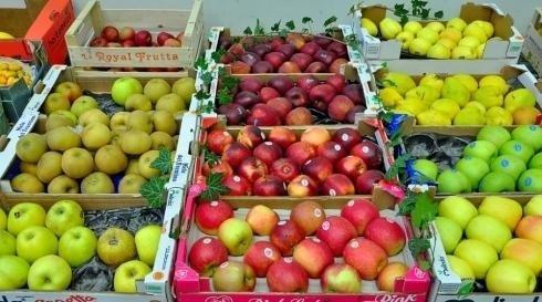 Vendita frutta all'ingrosso