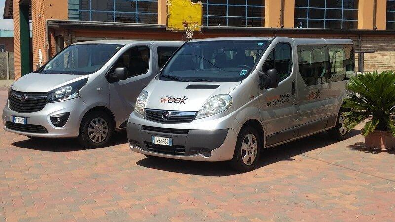 minibus grigi