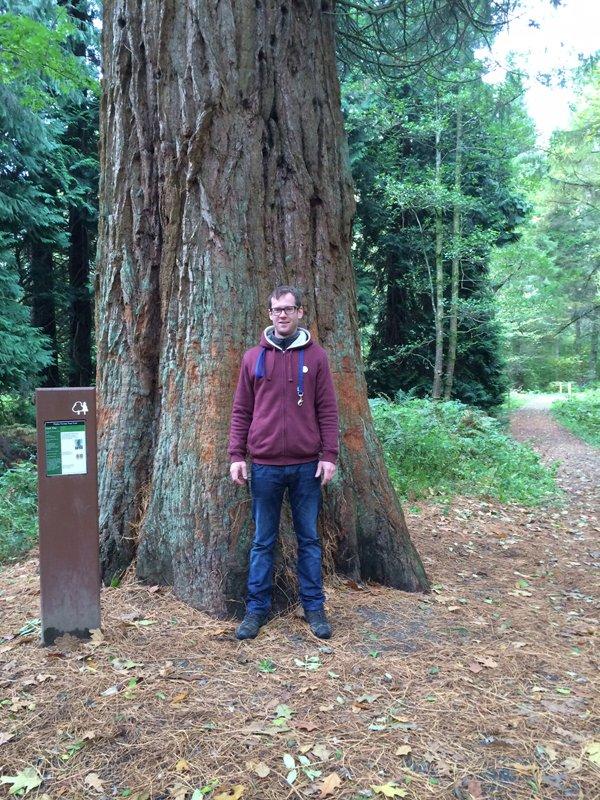 tree surgeon posing