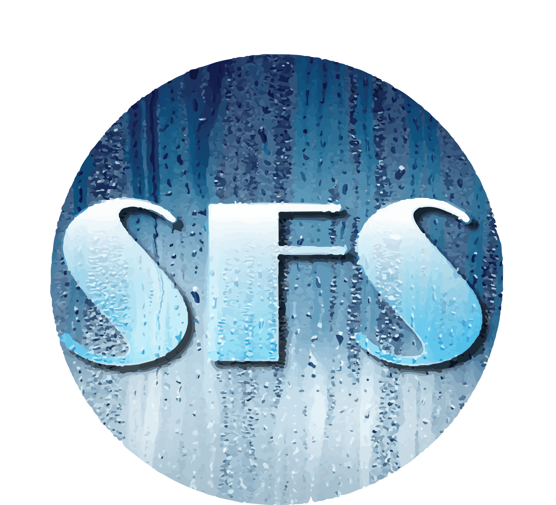 Frameless Shower Doors   Custom Glass Door Installation