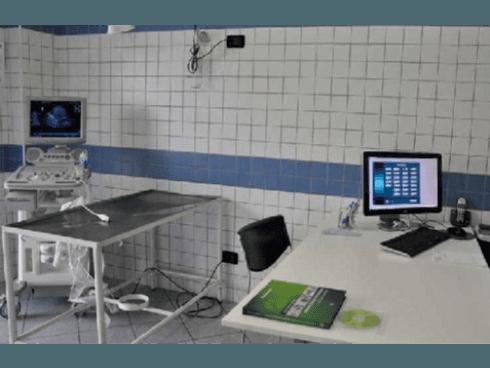 Si eseguono visite ecografiche e monitorizzazioni della gravidanza per cani e gatti.