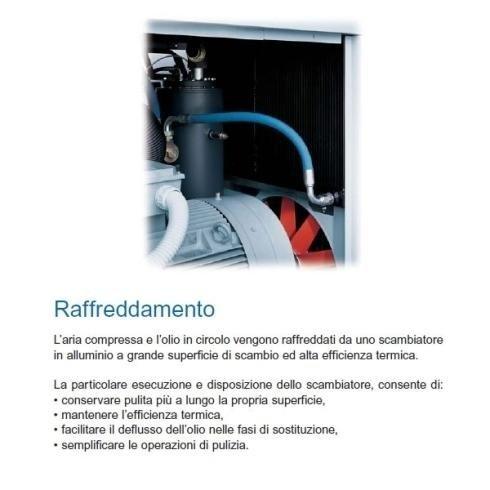 ricambi manutenzione compressori rotativi a vite Cantù