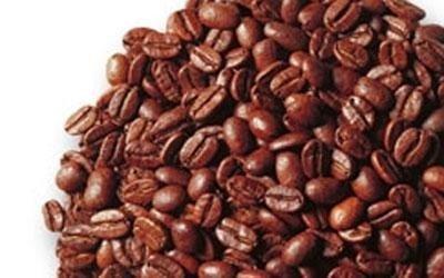 fornitura caffe espresso