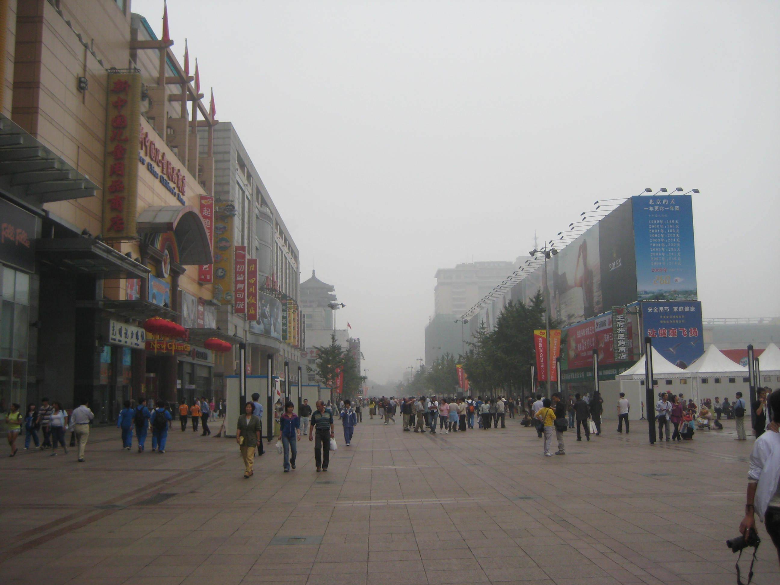 CSIFG2008/wangfujingstpa.JPG