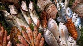 consegna pesce, consegna pesce a yacht, consegna pesce a barche