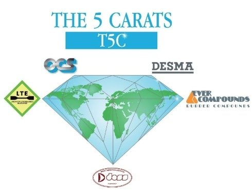 THE 5 CARATS