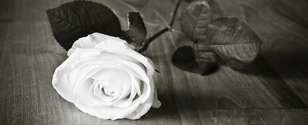 onoranze funebri zanoni di zanoni renzo & marco