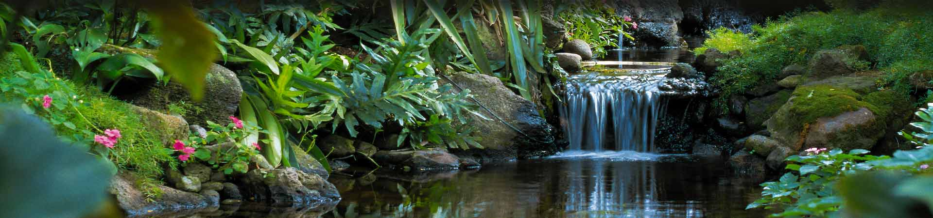 Natural Water stream