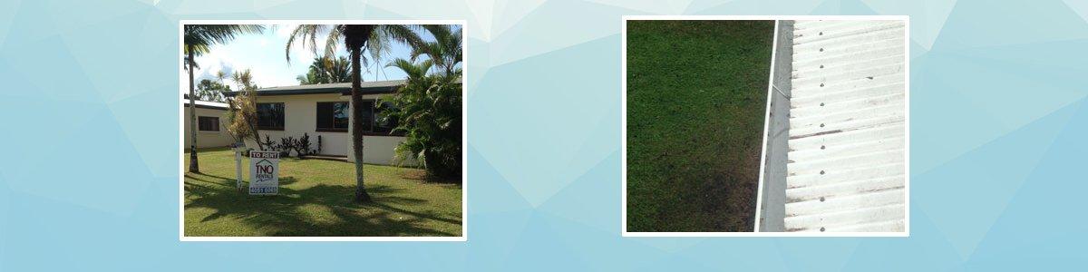 clover lawn and garden ccre gardens