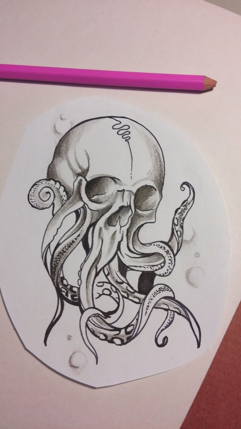 sketch octopus skull teschio