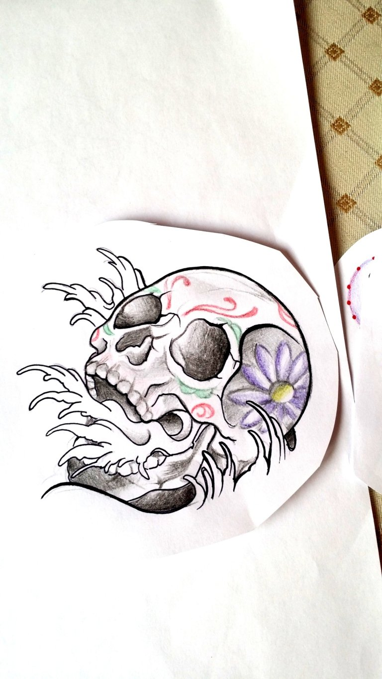 sketch japan skull teschio