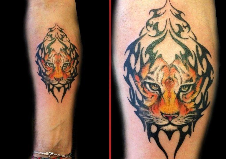 tatuaggio tribale - tigre