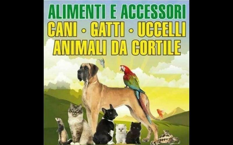 vendita alimenti e accessori animali