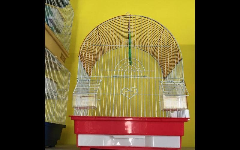 gabbia uccelli salerno
