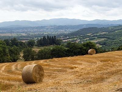 escursioni Cavriago