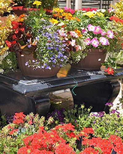 Garden Tools San Rafael, CA