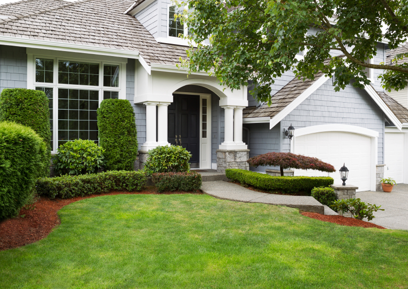 Termite Inspection Service Pearland, TX