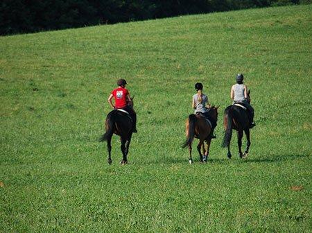 tre ragazze sui cavalli nel verde