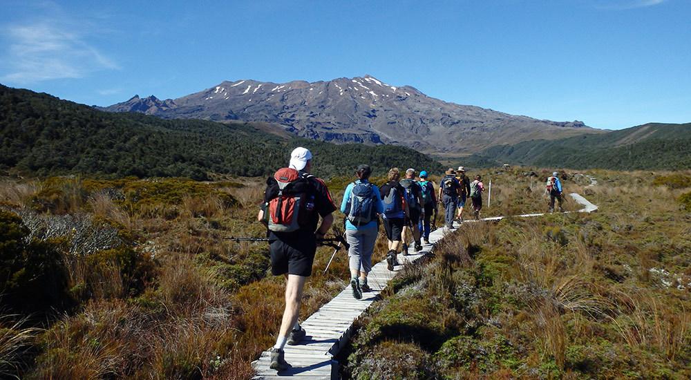 Hiking in Pokaka
