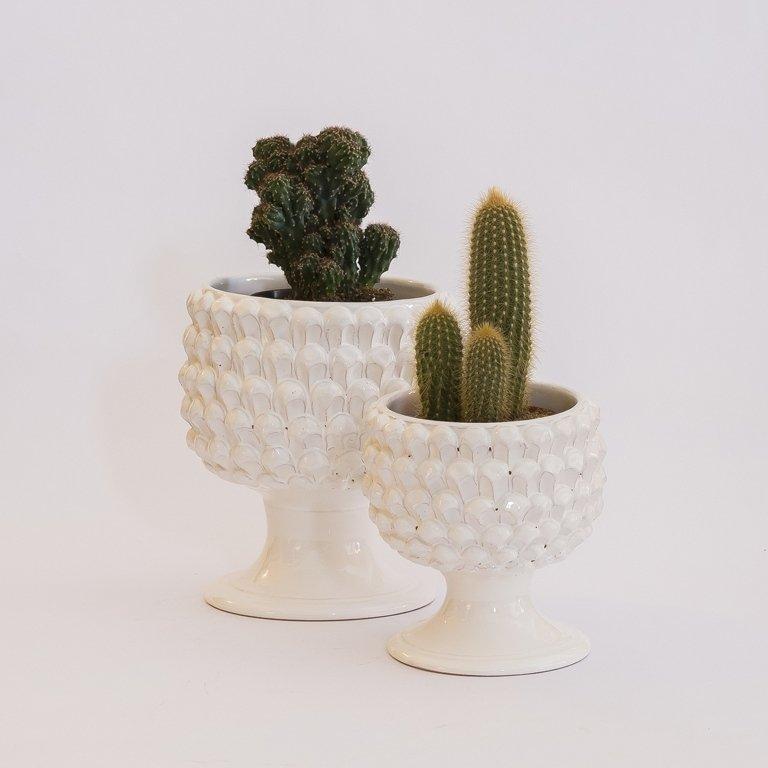 Vasi di ceramica bianca