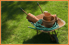 Wheelbarrow with a hosepipe and plant pots in it