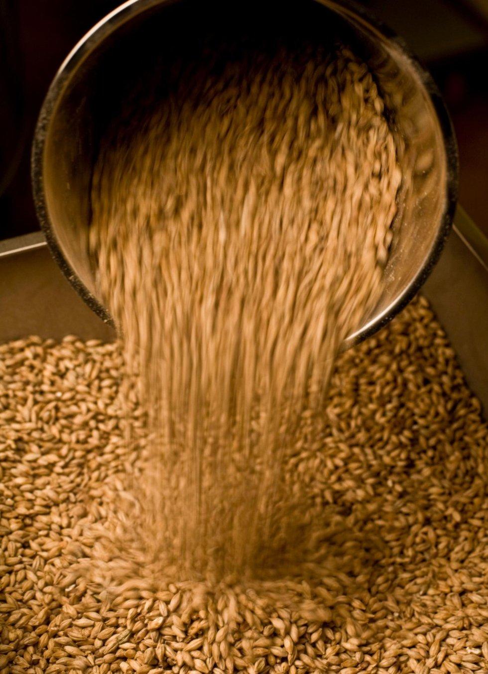 Produzione birra san quirico