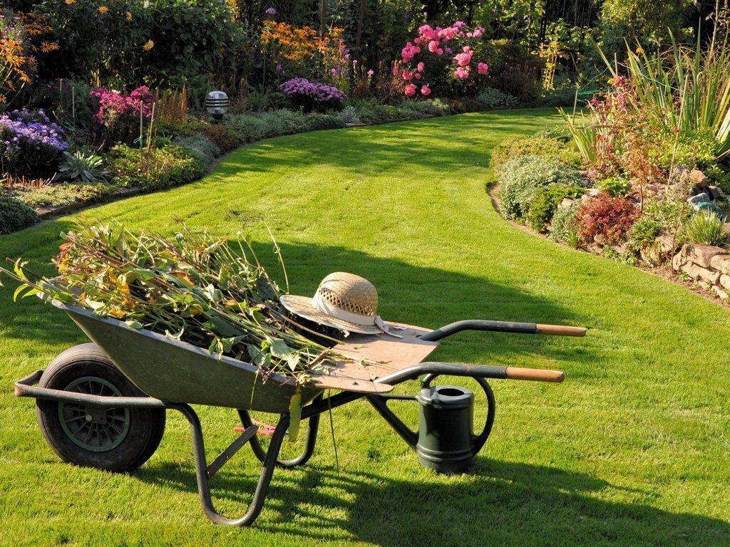 carrello in un giardino