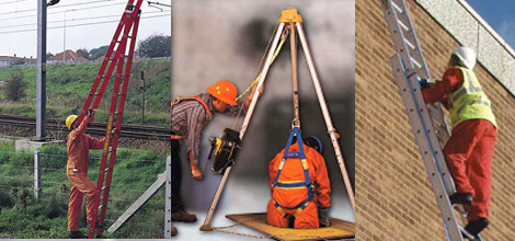 Men in ladder and harness training