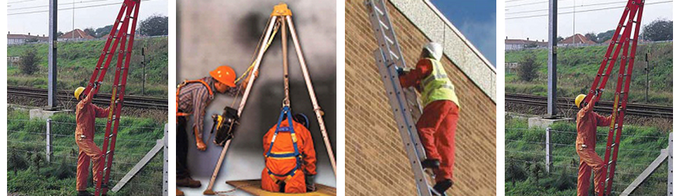 Harness & Ladder Training