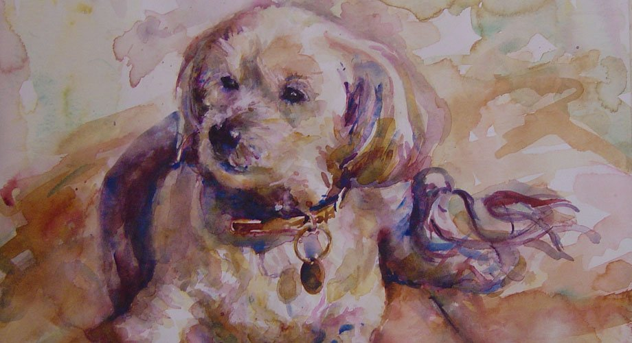 View of a portrait of a cute dog