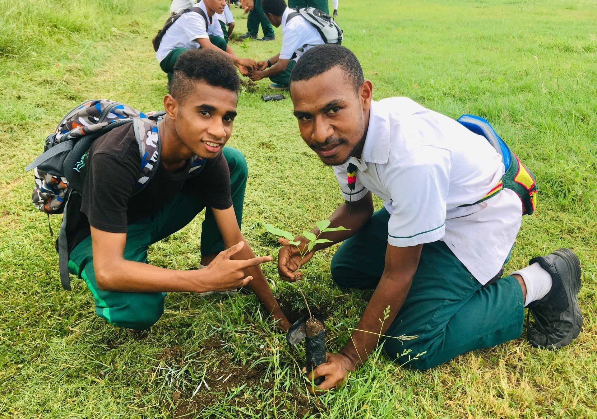 Schools Tree Planting Project launched