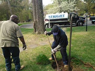 Septic Tank Repair | Greenwich & Stamford, CT