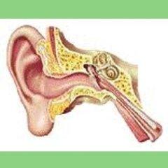 trattamento perdita uditiva