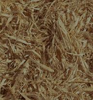 smaltimento legna
