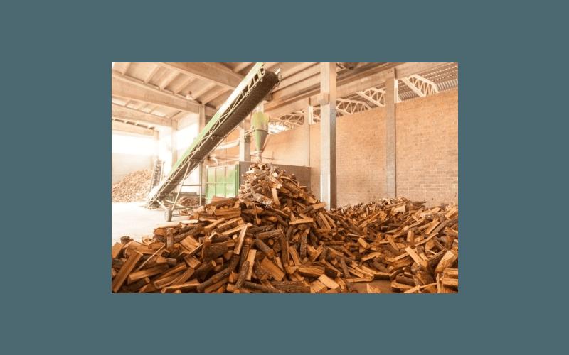 tronchi legname