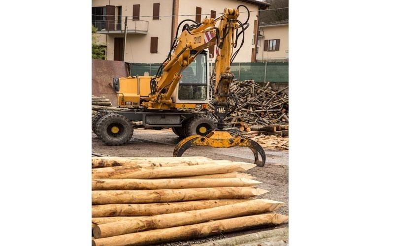 Taglio pali in legno