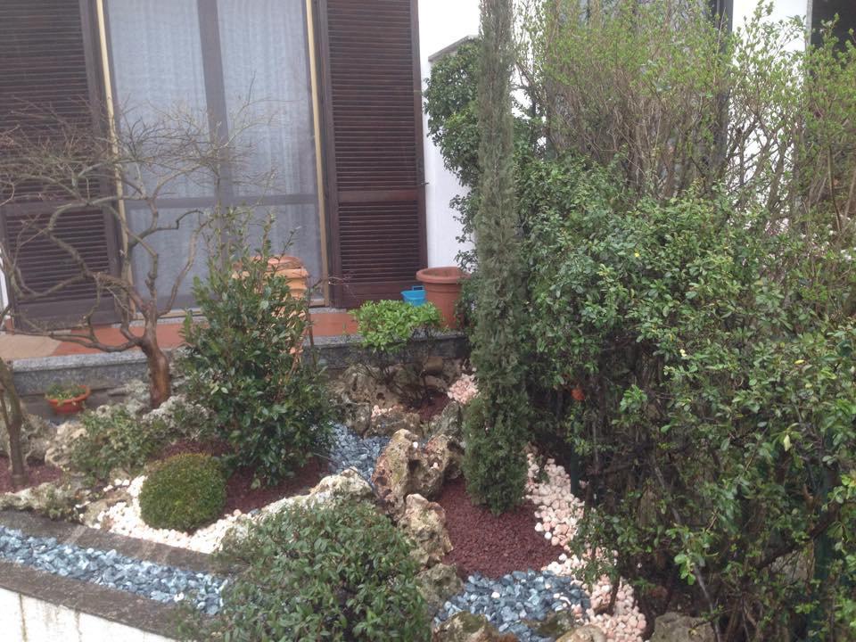 un giardino di fronte a un abitazione con un'aiuola contornata da sassi con  delle piantine altre piante attorno di diversi tipi