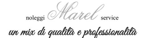 MAREL SERVICE - LOGO