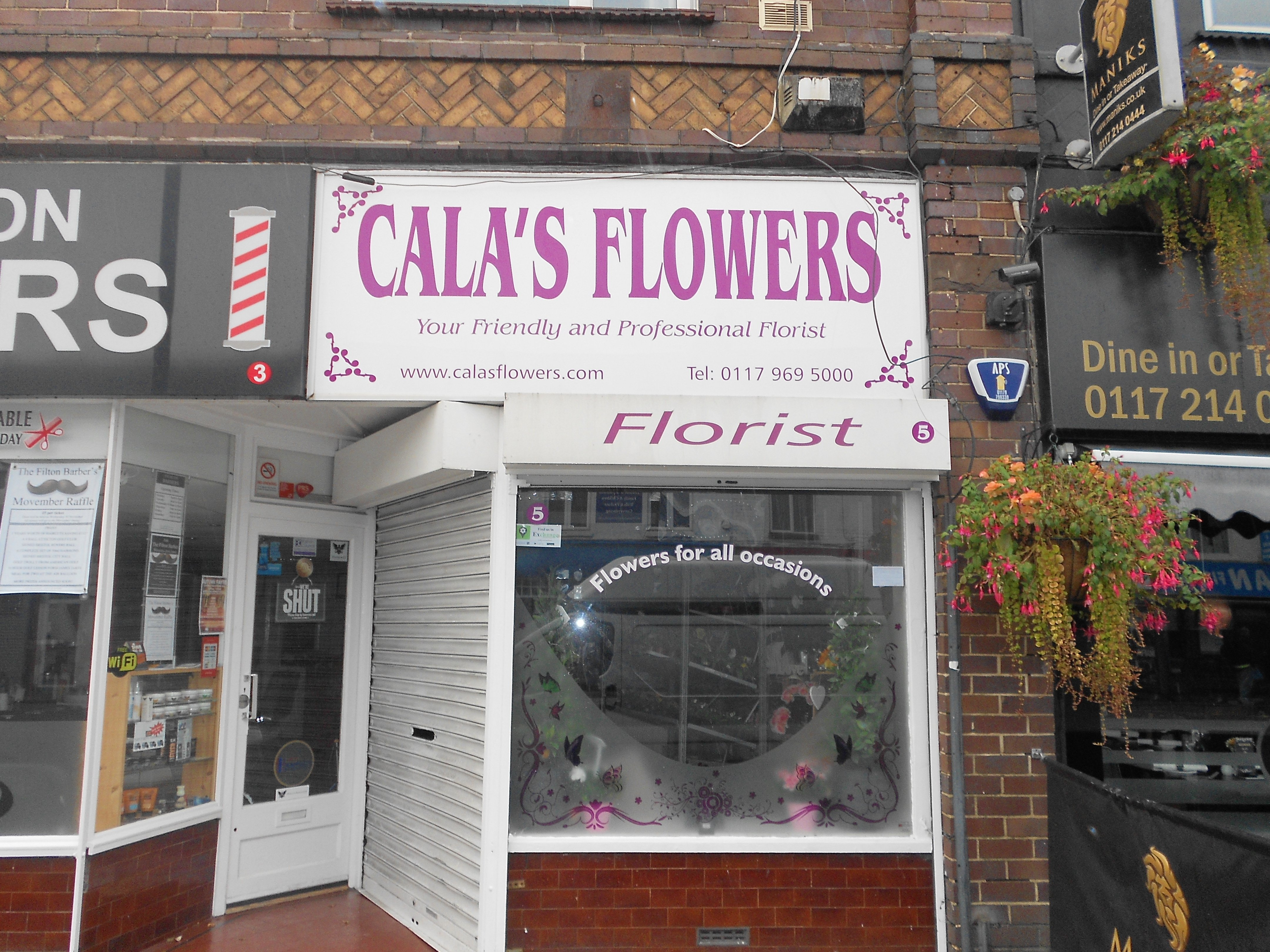 Cala's flowers