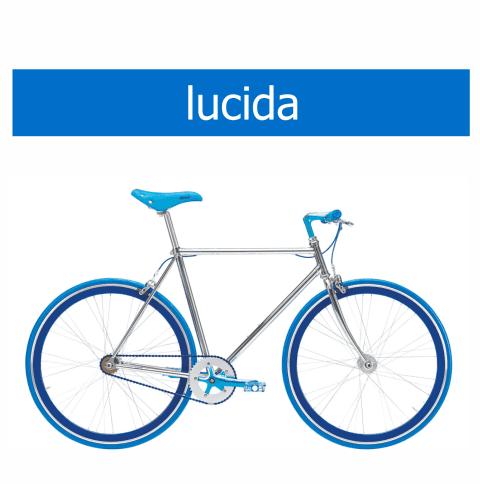 bicicletta Olmo modello Lucida