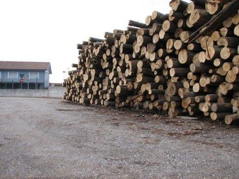 legname tagliato su misura