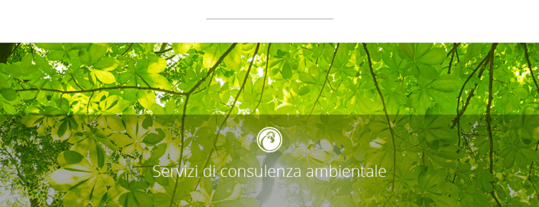 CONSULENZA AMBIENTALE