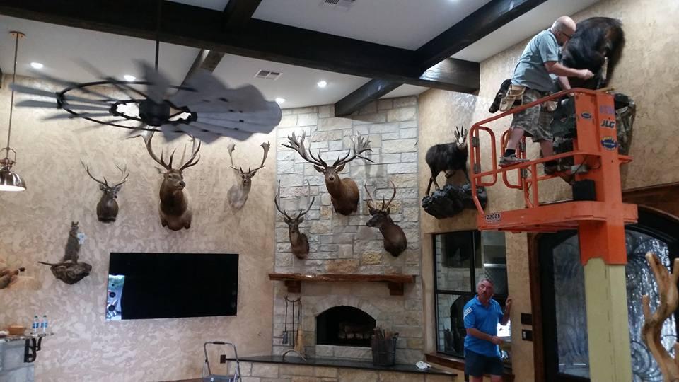 Safari Studios San Angelo TX Trophy Room Designs