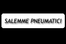Salemme Pneumatici