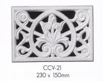 ccv 21