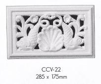 ccv 22