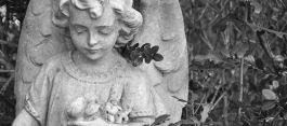 onorane funebri Baroero & Magnone