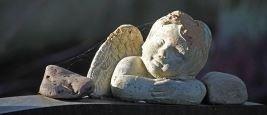 cremazione Baroero & Magnone