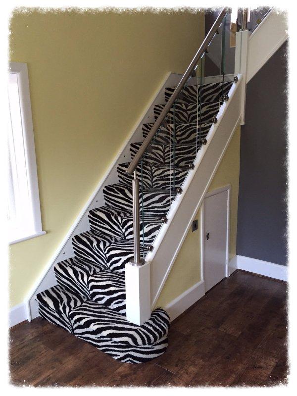 Zoo Imperial Zebra